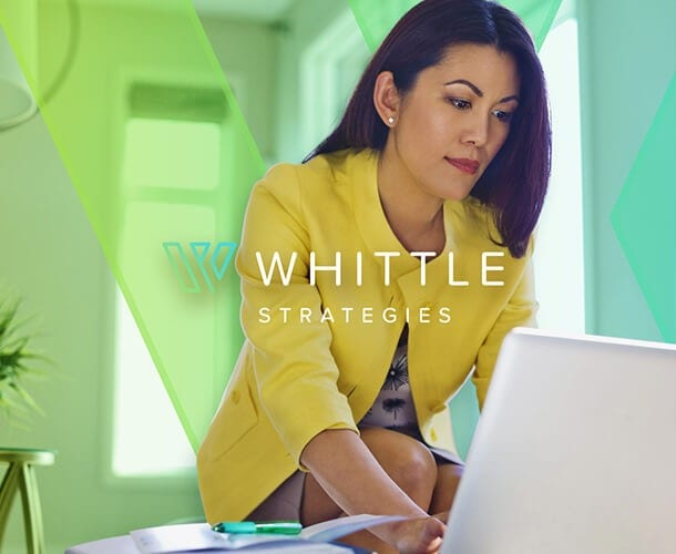 Whittle-Strategies_Proactive-Accounting_Strategic-Managment-Accounting_Remote-CFO-Controller_Financial-Training_Bookkeeping_Next-Case-Study